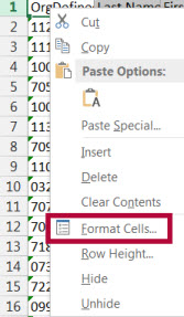 Image shows format cells option in Excel.