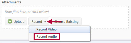 Shows location of record audio button.