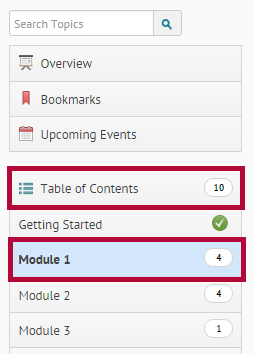 Identifies the Table of Contents and a module.