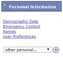 Shows the items in the Personal Information category.