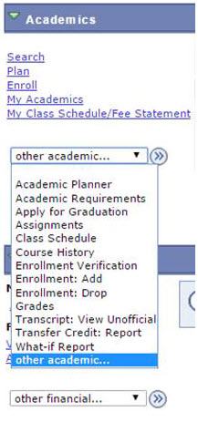 Shows the items in the Academics category.