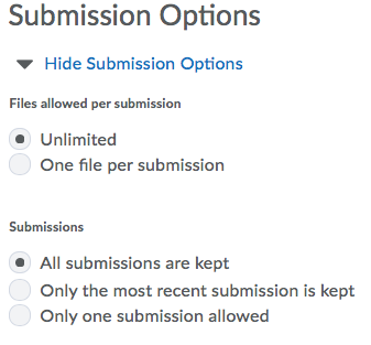 Screenshot of Assignment Submission Options