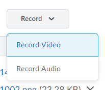 Shows the Record button and options.