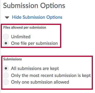 Submission Options for Assignments