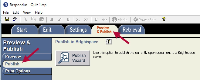 Displays Preview and Publish tab with Publish menu selected