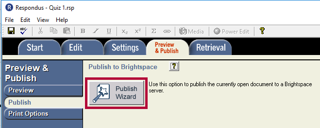 Displays Publish Wizard button
