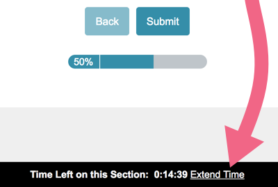 Survey Timer: Extend Time