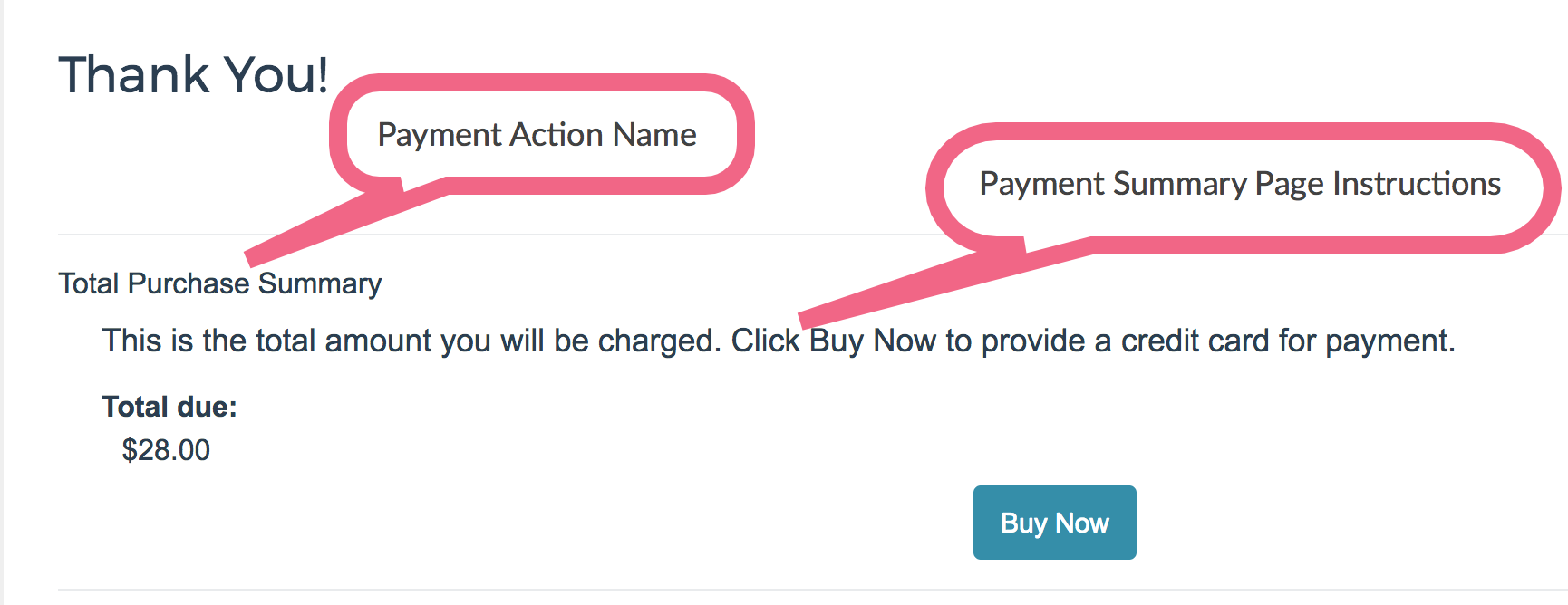 Payment Action Name and Summary Page Instructions