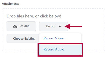 Indicates location of Record menu. Identifies Record Audio choice.