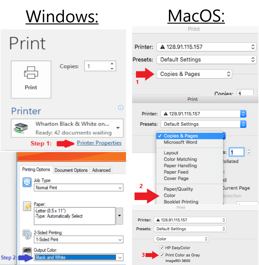 Windows and Mac Print Screens