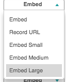 Identifies Embed options