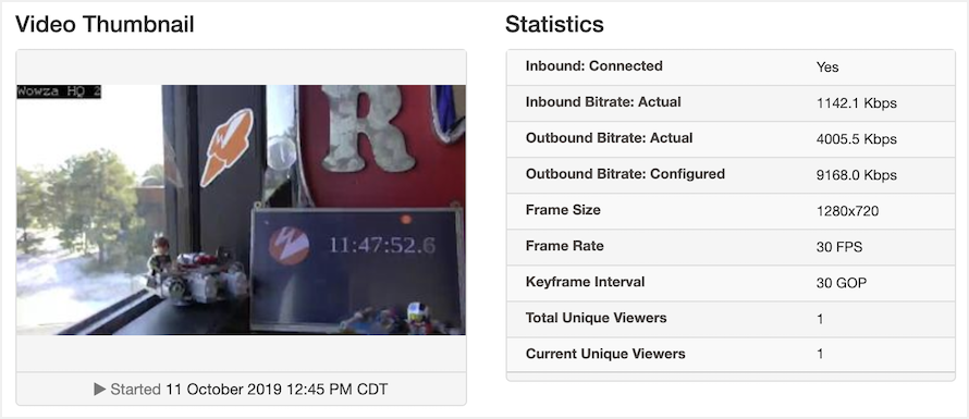 Video thumbnail and stream statistics overview