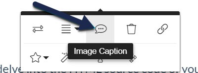 Screenshot of the Image Caption button in Modern Editor