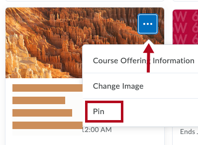 Identifies Pin option for a course.
