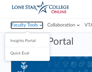 Shows Insights Portal option under Faulty Tools from the D2L homepage.