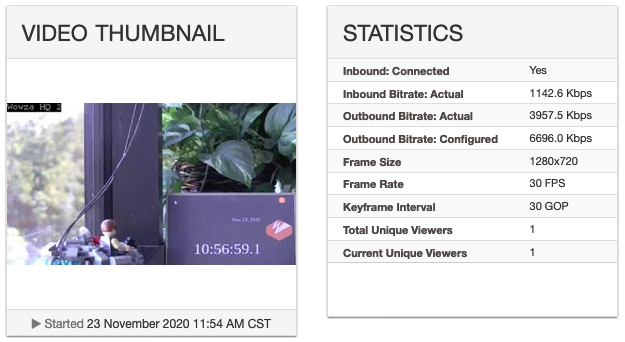 Video thumbnail and statistics panel